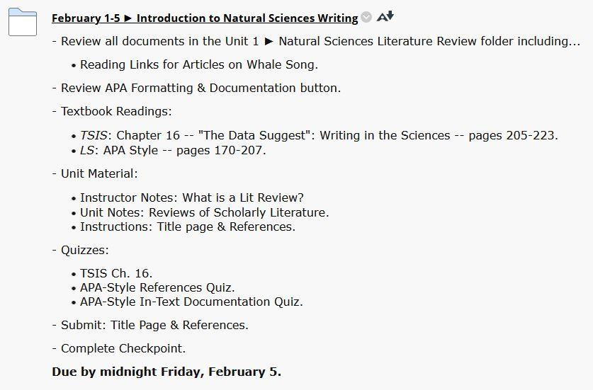 Screenshot of ENG 111 assignment module